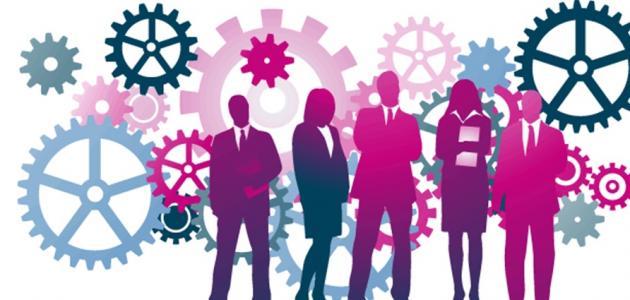 مبادئ إدارة الموارد البشرية في الشركات (HRP) 2