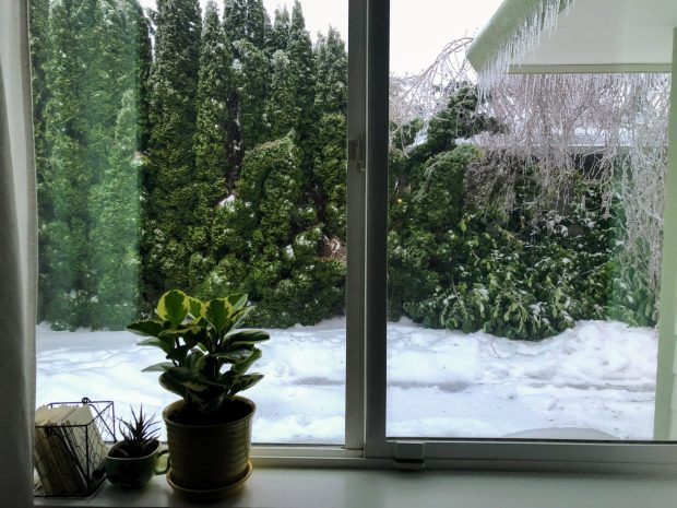 View of snow-covered driveway through a bedroom window. Trees covered with ice and icicles hanging from roof.
