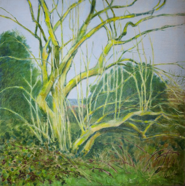 Oil on Natural linen canvas 80x80cm