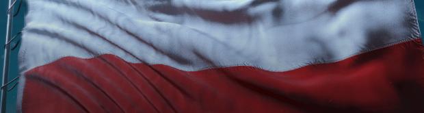 Polish Banner