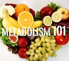 What is your Metabolism and Why low Calorie Diets Dont Work
