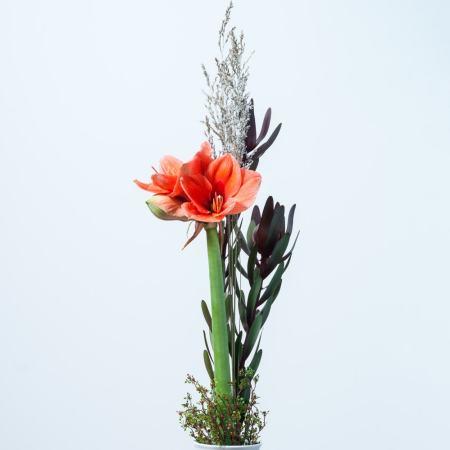 Sezoninė mini puokštė su amariliu