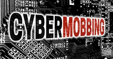 Cybermobbing, Erfahrung der Praxis Ritter und Gerstner
