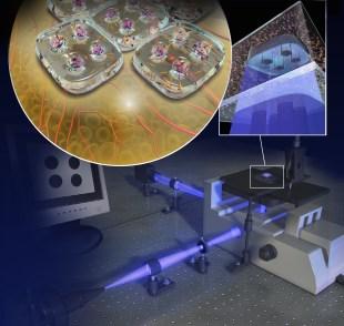 High-Resolution 3D Bio-Printing