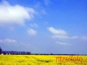...yellow!!!!