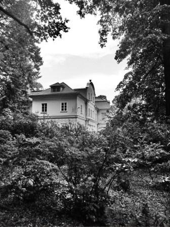 Tannenfeld31