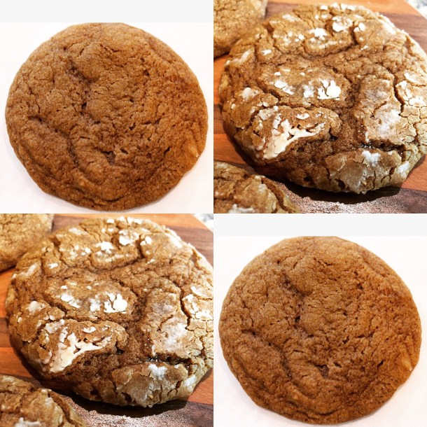 gingercookiecover