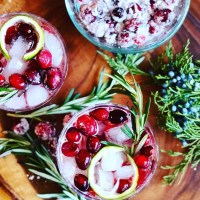 Juniper Berry Cranberry Cocktail (Best Christmas Cocktail EVER)
