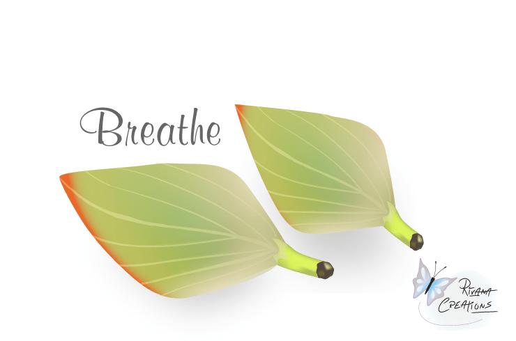 Flower Petals, Breathe Vector Illustration