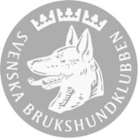 logo_sbk_white