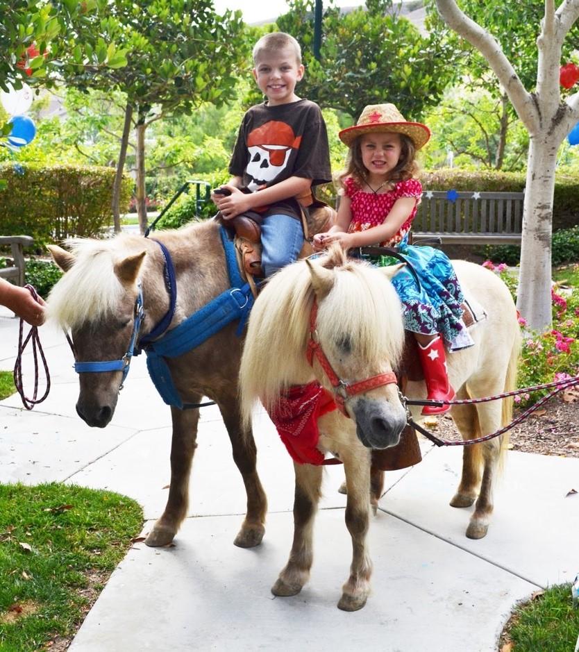 Pony Rides Pony Rentals Miami Party Event Services Rivera Events
