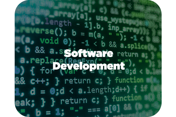 Rivera Federal IT Services - Software Development