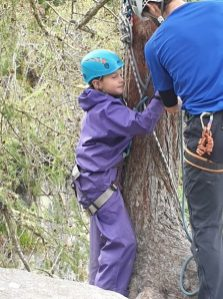 Is this abseiling or tree hugging?