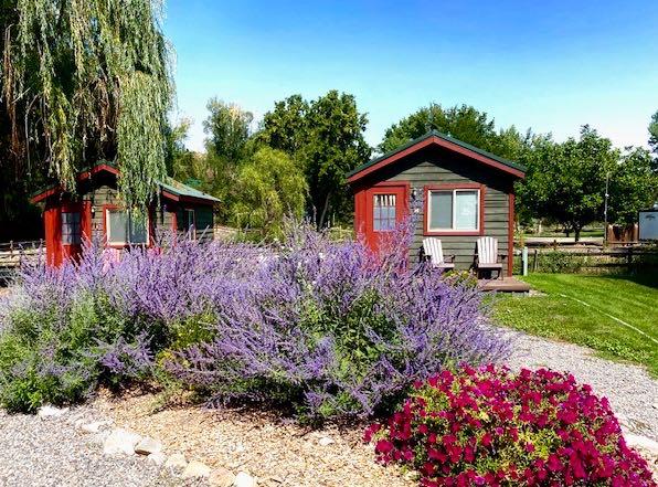 Rustic Camping Cabin