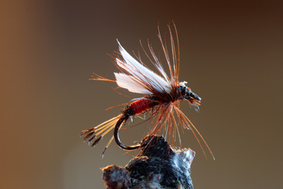Fly-Fishing-Close-Up
