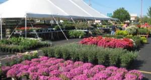 PBMC Garden Festival file photo