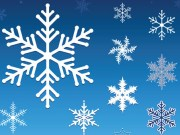 2013 1112 snowflakes