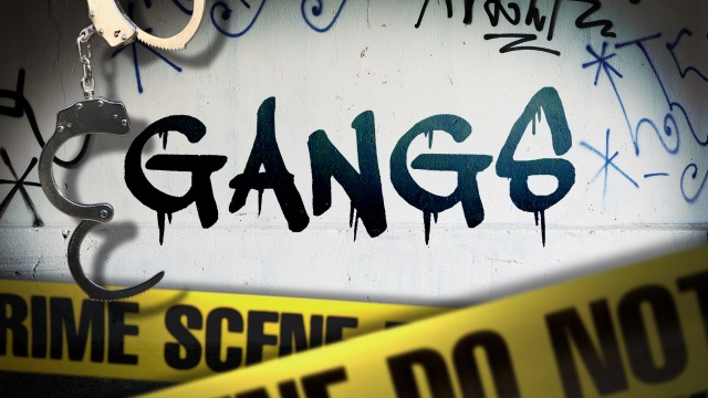 Image result for GANGS
