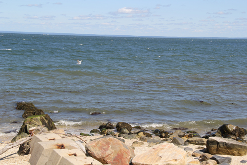 CARRIE MILLER PHOTO   Coast of the Long Island Sound in Greenport.
