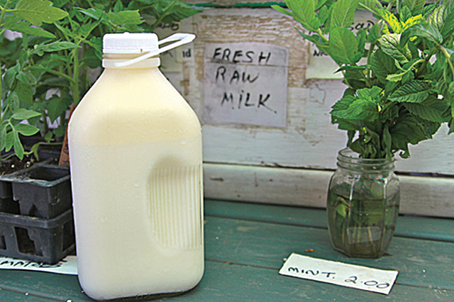 Raw milk at Ty Llwyd Farm in Northville costs $6 a half-gallon. (Credit: Jen Nuzzo, file)