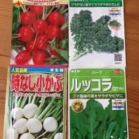 春蒔きの種 家庭菜園 協生農法風