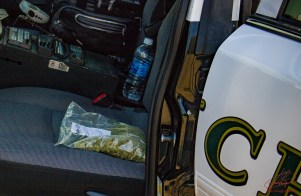 A large bag containing more than 28.5 grams of marijuana was located inside the stolen vehicle. John Strangis photo