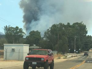 """The """"Bogart"""" fire had reached 400 acres within 2 hours in spite of nearly 400 firefighters on scene battling the blaze."""
