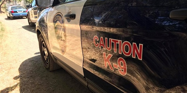 REDDING: K-9 sniffs out woman who fled from officers in stolen car