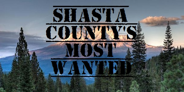 Shasta County's Most Wanted Criminals & Arrests - Updated Weekly