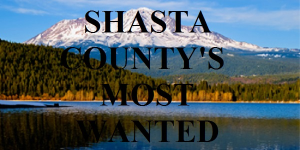 Shasta County's Most Wanted Criminals & Arrests - Updated Regularly
