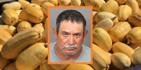"Authorities ""squash"" thief's efforts while investigating ongoing agricultural thefts"