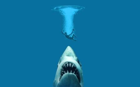 sharks-jaws_00338010