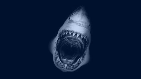White_Shark_Jaws