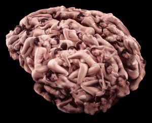 eumaeus-brain