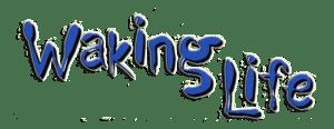 waking-life-505c44bc74c5f