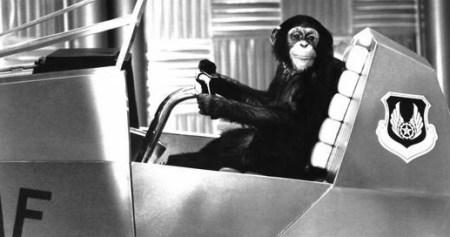 projectx-chimp