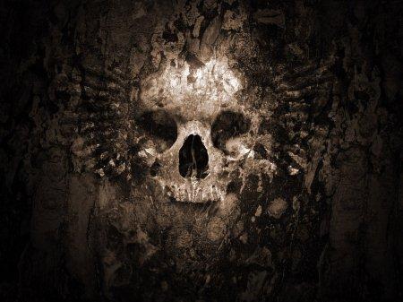 Skull_Wallpaper_V2_by_iRoot