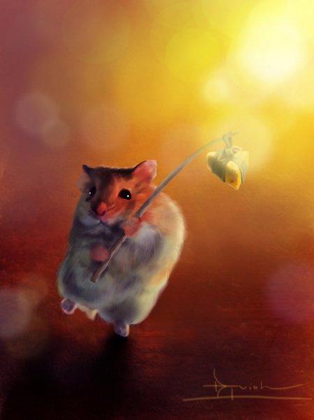 hamster_by_2lua-d36jyjw