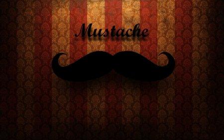vintage_mustache__3_by_babouche1995-d53jwj4