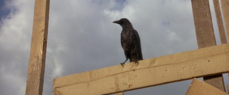The-crow-OMEN-IIs-foreboding-symbol