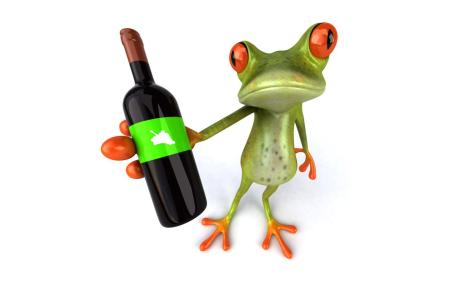 drinking-funny-frog-wallpaper,1280x800,63644