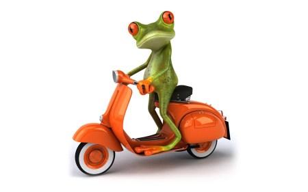 Frog-3D-15-1800x2880