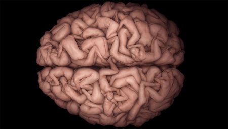 Human_Brain-with-bodies1