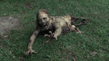 the-walking-dead-zombie-942918