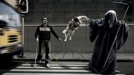 Dog-Attack-Grim-Reaper-Funny-Death-Image