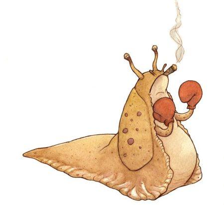 slug_boxer_by_kupenda_damu-d4xwtop