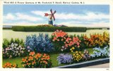 Wind Mill and Flower Gardens, Harvey Cedars, NJ