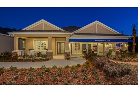 The Enclave at Channing Park Lithia Florida €‹New Homes Community