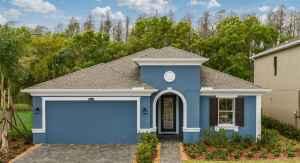 New Tampa Florida Real Estate     New Tampa Realtor   New Homes for Sale   Tampa Florida