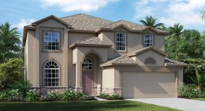 Free Service for Home Buyers   USDA    Ruskin Florida Real Estate   Ruskin Realtor   New Homes for Sale   Ruskin Florida